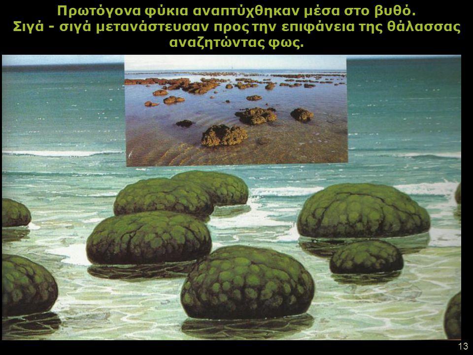 12 Ο καιρός περνούσε και η γη κρύωσε. Αέρια υγροποιήθηκαν κι έτσι δημιουργήθηκαν οι ωκεανοί. Η Γη έγινε μπλε!