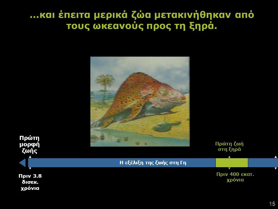 14 Τα πρώτα ζώα και οργανισμοί εμφανίστηκαν αργότερα…!