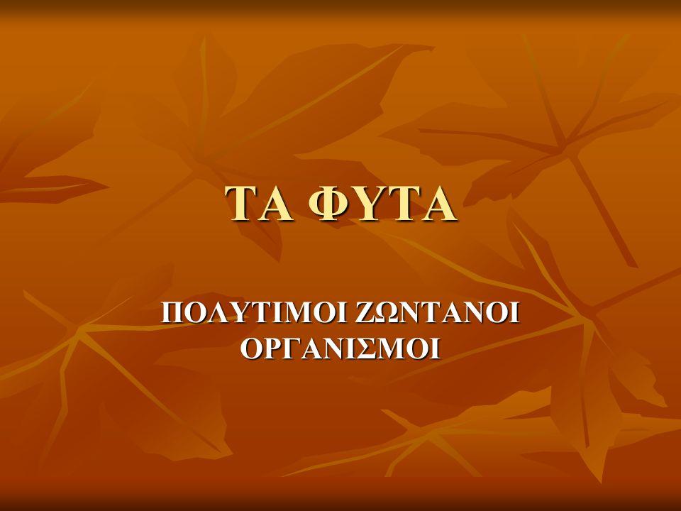 Τι είναι η χλωρίδα;  Το σύνολο των φυτών μιας χώρας αποτελεί την χλωρίδα της  Η ελληνική χλωρίδα παρουσιάζει μεγάλη ποικιλία από διαφορετικά είδη φυτών.