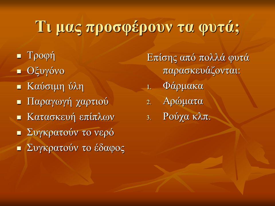 Τα φυτά διακρίνονται επίσης και σε:  Αυτοφυή (φυτρώνουν και μεγαλώνουν μόνα τους)  Καλλιεργήσιμα (τα σπέρνει και τα φυτεύει ο άνθρωπος για τις διάφορες ανάγκες του)