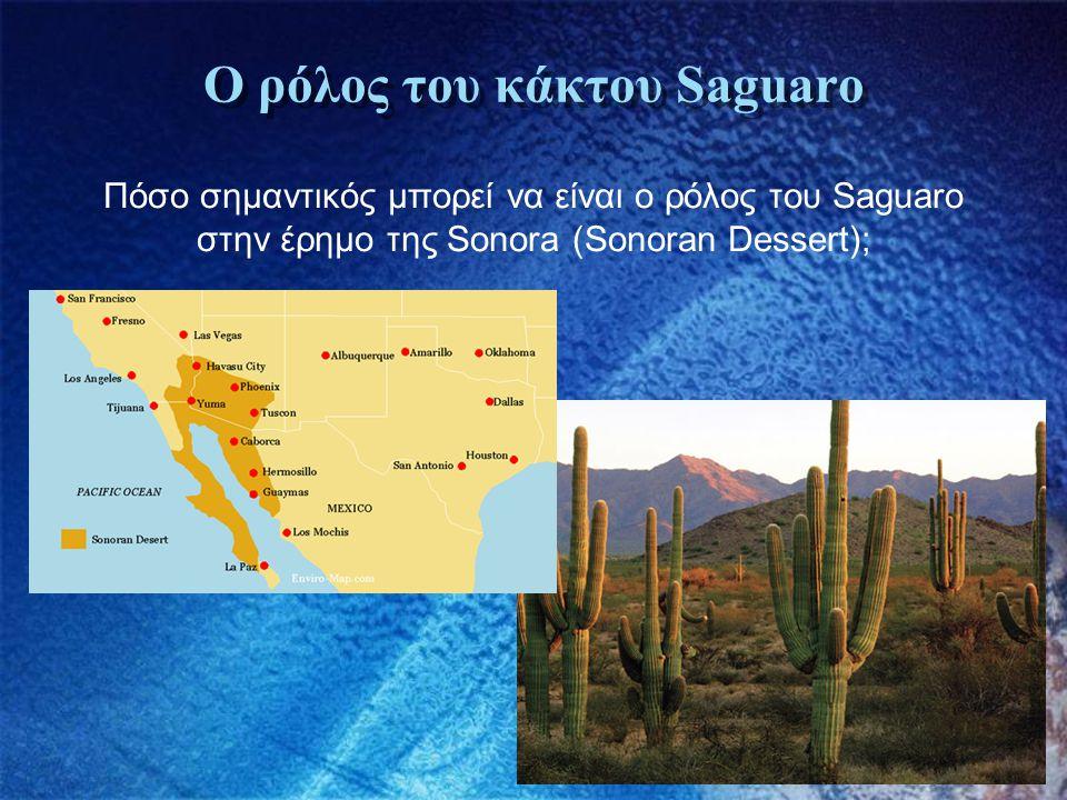 Ο ρόλος του κάκτου Saguaro Πόσο σημαντικός μπορεί να είναι ο ρόλος του Saguaro στην έρημο της Sonora (Sonoran Dessert);