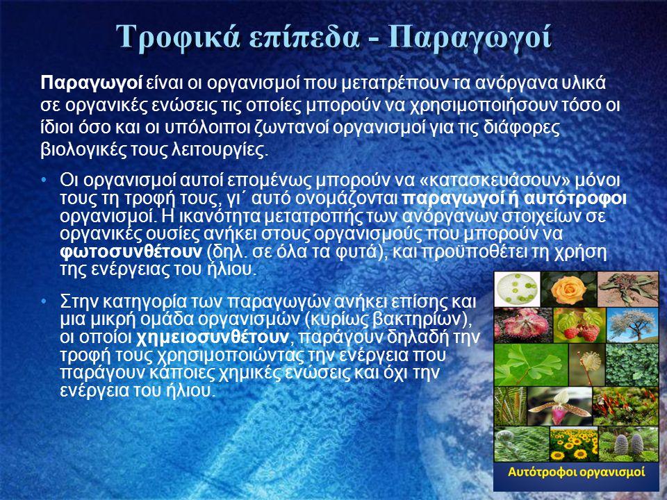 Τροφικά επίπεδα - Καταναλωτές Καταναλωτές θεωρούνται όλοι οι άλλοι οργανισμοί, οι οποίοι δεν έχουν τη δυνατότητα να συνθέσουν από μόνοι τους τις οργανικές ουσίες και αναγκάζονται να τις παίρνουν έτοιμες είτε Άμεσα, όπως τα φυτοφάγα ζώα, είτε έμμεσα, όπως τα σαρκοφάγα τρώγοντας άλλα ζώα.