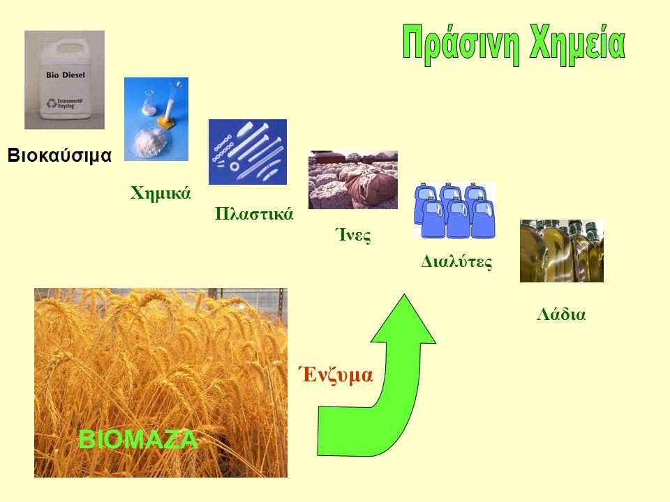 Χημικά Πλαστικά Ίνες Διαλύτες Λάδια Ένζυμα Βιοκαύσιμα ΒΙΟΜΑΖΑ