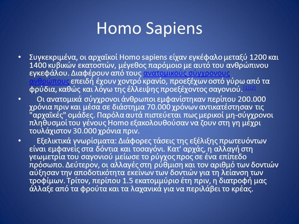 Homo Sapiens • Συγκεκριμένα, οι αρχαϊκοί Homo sapiens είχαν εγκέφαλο μεταξύ 1200 και 1400 κυβικών εκατοστών, μέγεθος παρόμοιο με αυτό του ανθρώπινου ε