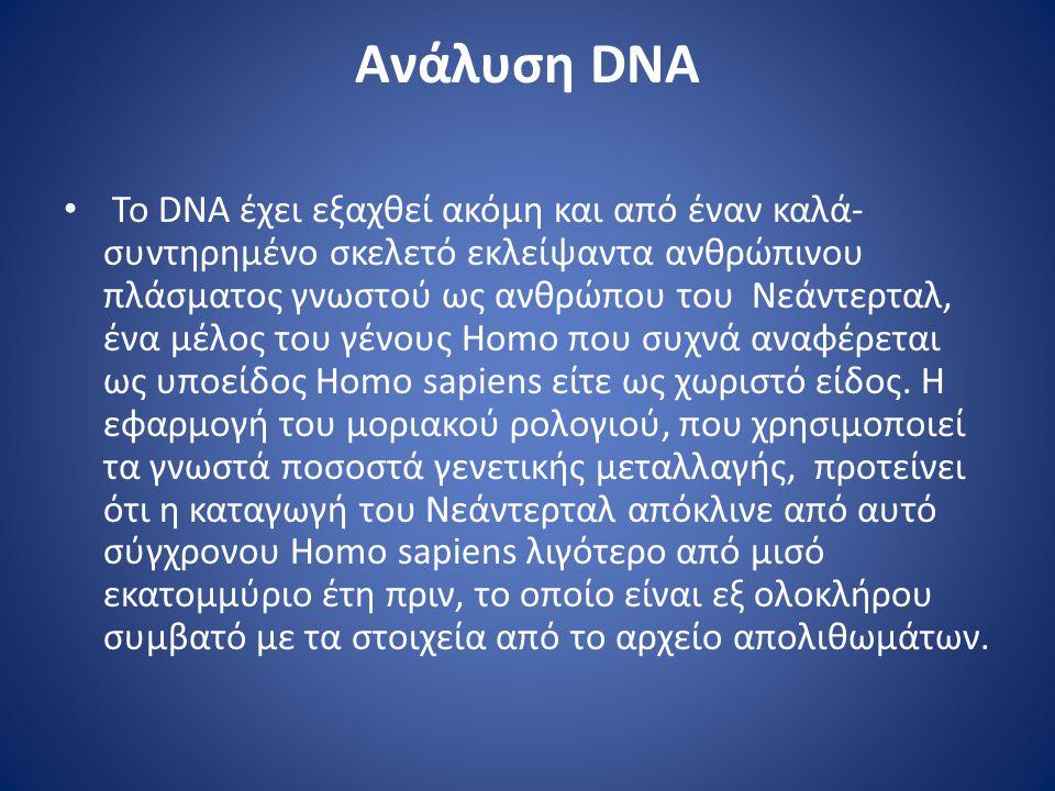 Ανάλυση DNA • Το DNA έχει εξαχθεί ακόμη και από έναν καλά- συντηρημένο σκελετό εκλείψαντα ανθρώπινου πλάσματος γνωστού ως ανθρώπου του Νεάντερταλ, ένα