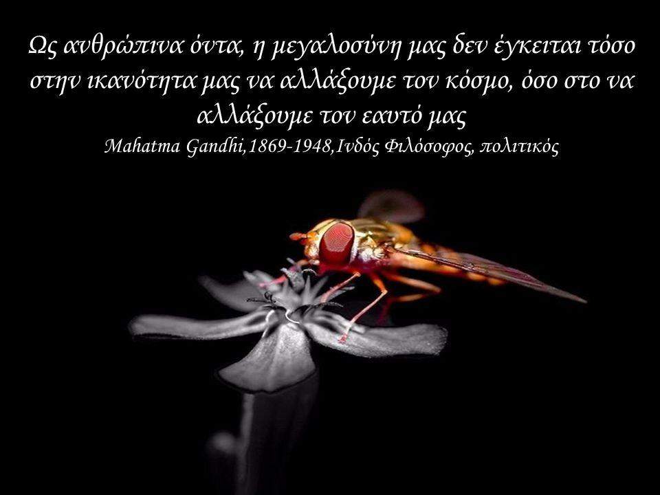 Είναι καλό να θυμόμαστε ότι το σύμπαν -με μια μικρή, ασήμαντη εξαίρεση- αποτελείται από τους άλλους. John Andrew Holmes, 1773-1843, Αμερικανός πολιτικ