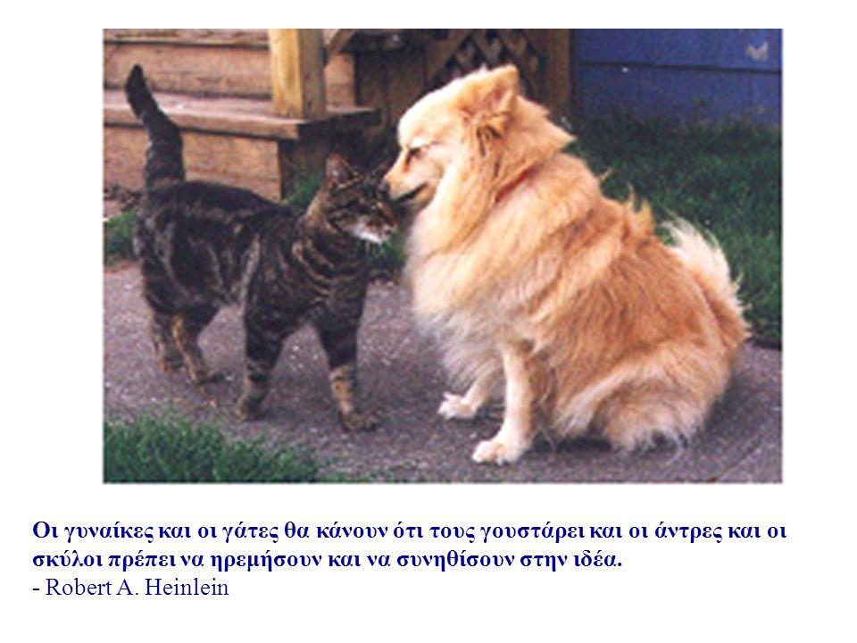 Ο λόγος που ένας σκύλος έχει τόσους φίλους είναι ότι κουνάει την ουρά αντί για τη γλώσσα του. - ανώνυμος