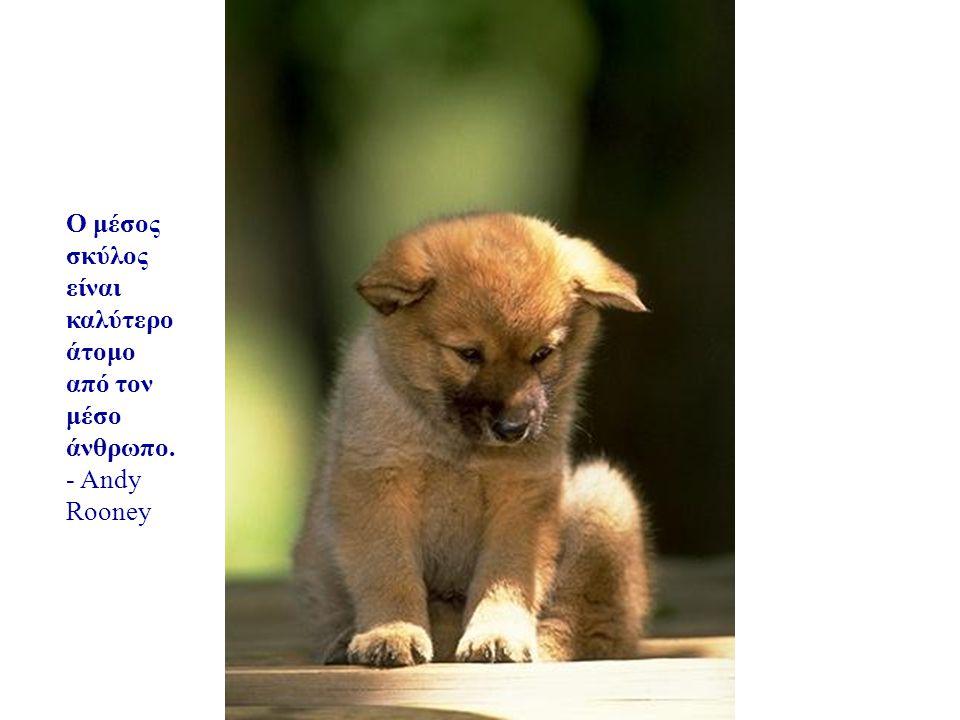 Αν δεν υπάρχουν σκύλοι στον Παράδεισο, τότε όταν πεθάνω θέλω να πάω όπου πήγαν κι εκείνοι. - Will Rogers
