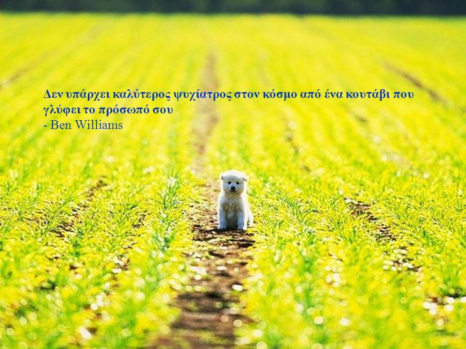 Αν μαζέψεις ένα πεινασμένο σκύλο και του προσφέρεις μια καλή ζωή δε θα σε δαγκώσει. Αυτή είναι η βασική διαφορά ανάμεσα σ΄έναν σκύλο κι έναν άνθρωπο.