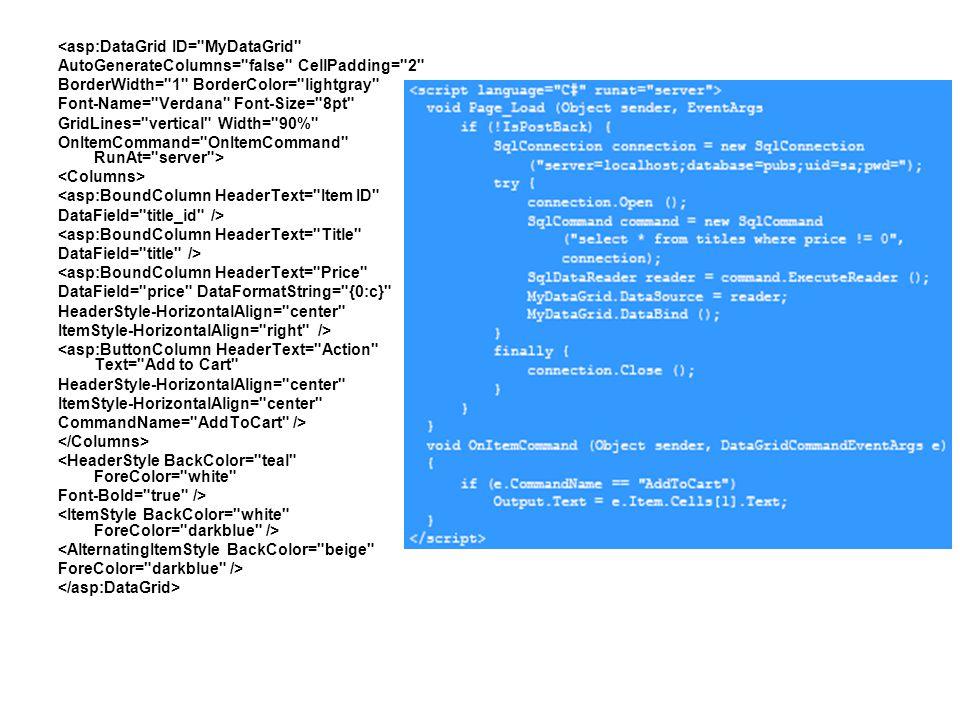 <asp:DataGrid ID=