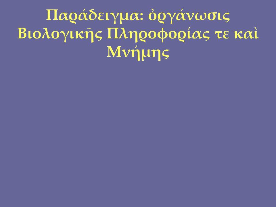 Παράδειγμα: ὀργάνωσις Βιολογικῆς Πληροφορίας τε καὶ Μνήμης