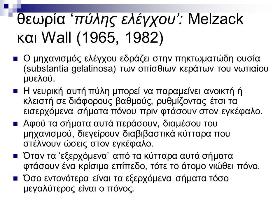 θεωρία 'πύλης ελέγχου': Melzack και Wall (1965, 1982)  Ο μηχανισμός ελέγχου εδράζει στην πηκτωματώδη ουσία (substantia gelatinosa) των οπίσθιων κεράτ