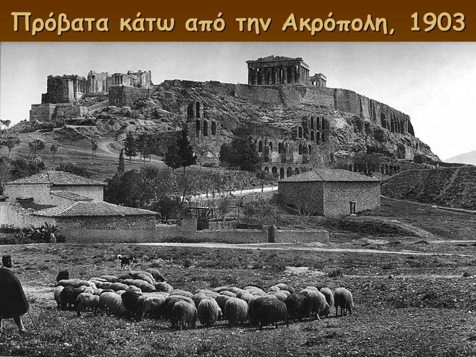 Πρόβατα κάτω από την Ακρόπολη, 1903