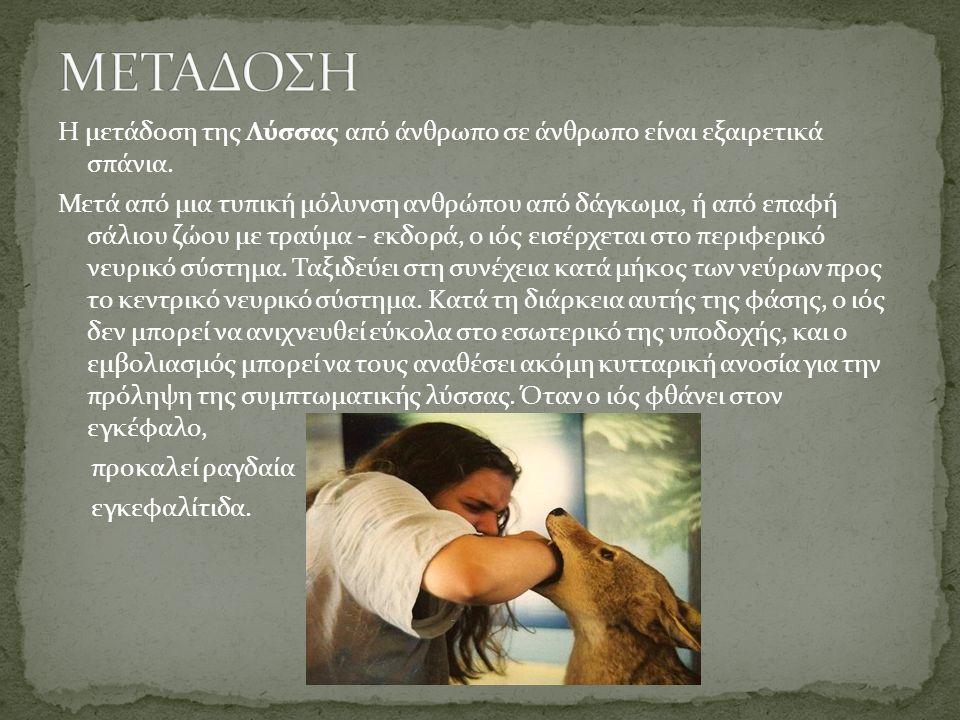 Η μετάδοση της Λύσσας από άνθρωπο σε άνθρωπο είναι εξαιρετικά σπάνια. Μετά από μια τυπική μόλυνση ανθρώπου από δάγκωμα, ή από επαφή σάλιου ζώου με τρα