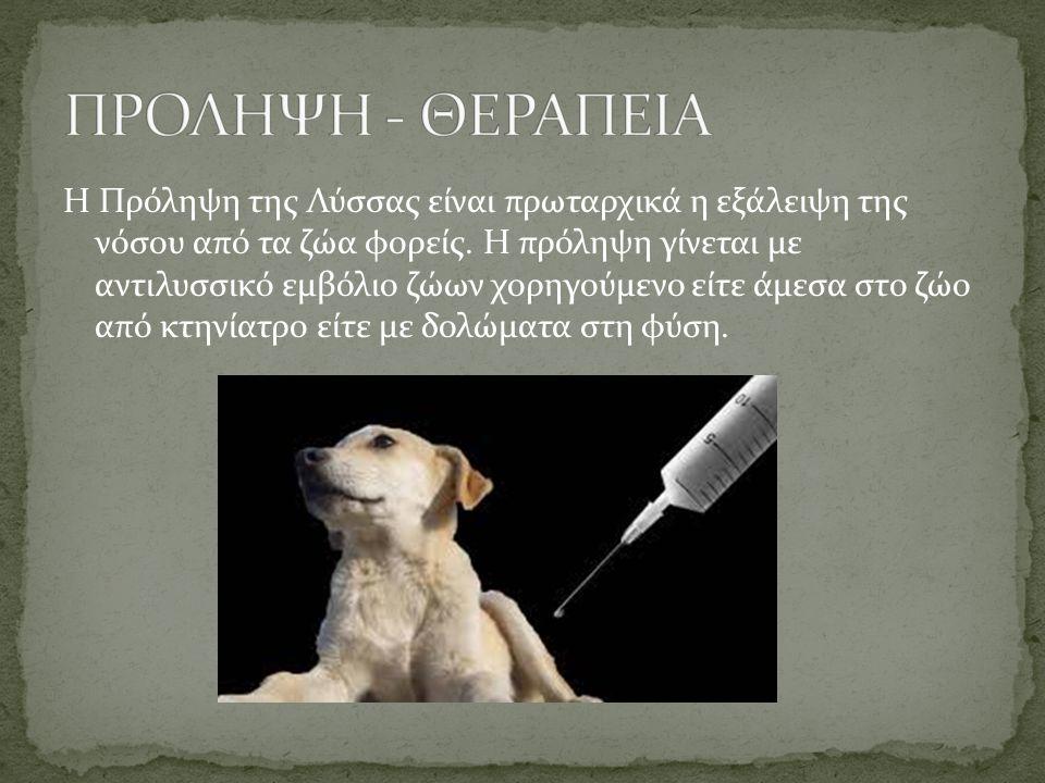 Η Πρόληψη της Λύσσας είναι πρωταρχικά η εξάλειψη της νόσου από τα ζώα φορείς. Η πρόληψη γίνεται με αντιλυσσικό εμβόλιο ζώων χορηγούμενο είτε άμεσα στο