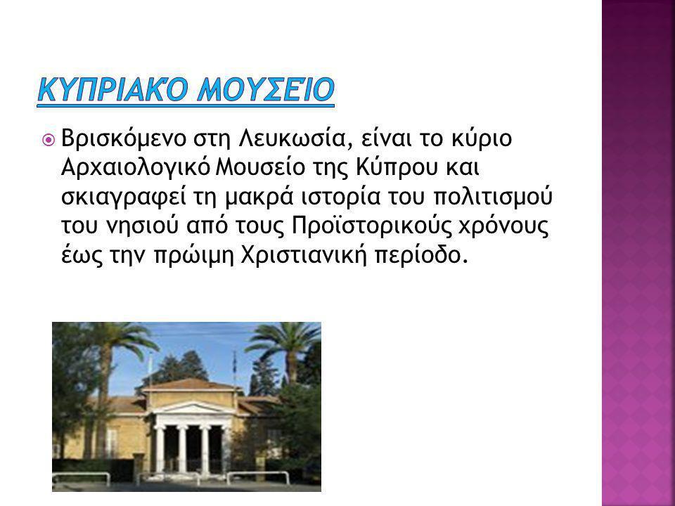  Βρισκόμενο στη Λευκωσία, είναι το κύριο Αρχαιολογικό Μουσείο της Κύπρου και σκιαγραφεί τη μακρά ιστορία του πολιτισμού του νησιού από τους Προϊστορικούς χρόνους έως την πρώιμη Χριστιανική περίοδο.