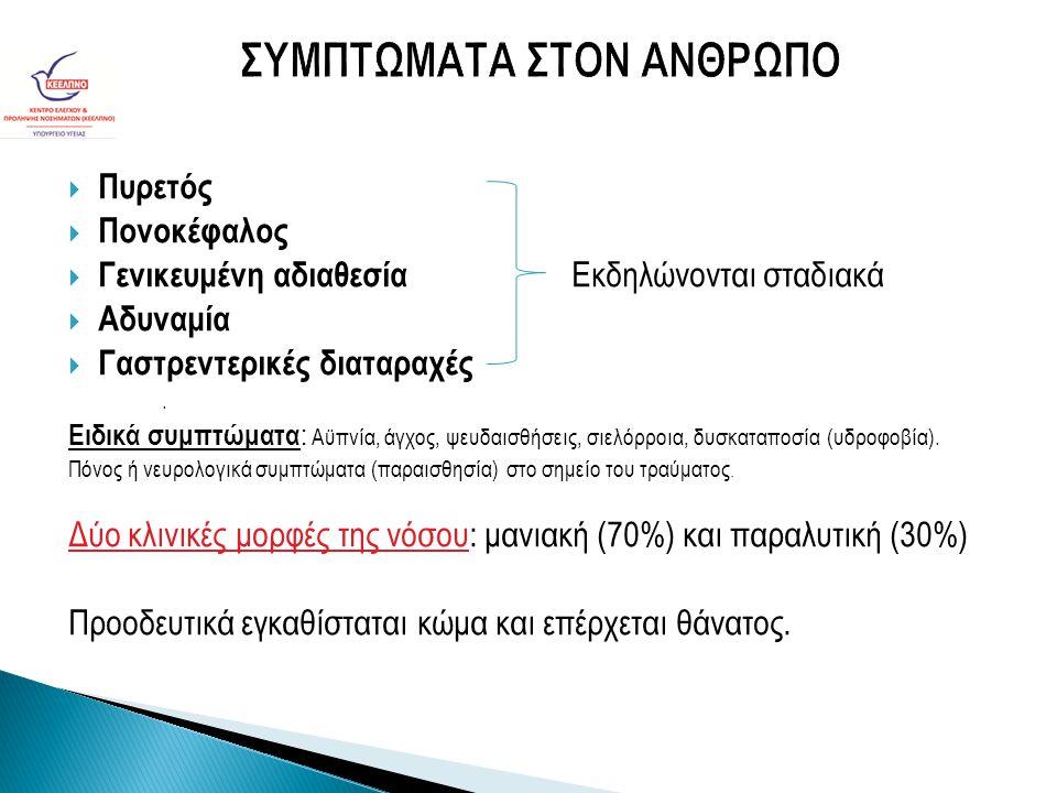  Η Πρόληψη της Λύσσας είναι πρωταρχικά η εξάλλειψη της νόσου από τα ζώα φορείς και κυρίως από τα σκυλιά και τις αλεπούδες (στην Ελλάδα) και στά σκυλιά Η πρόληψη γίνεται με αντιλυσσικό εμβόλιο ζώων χορηγούμενο είτε άμεσα στό ζώο από κτηνίατρο είτε με δολώματα στή φύση.