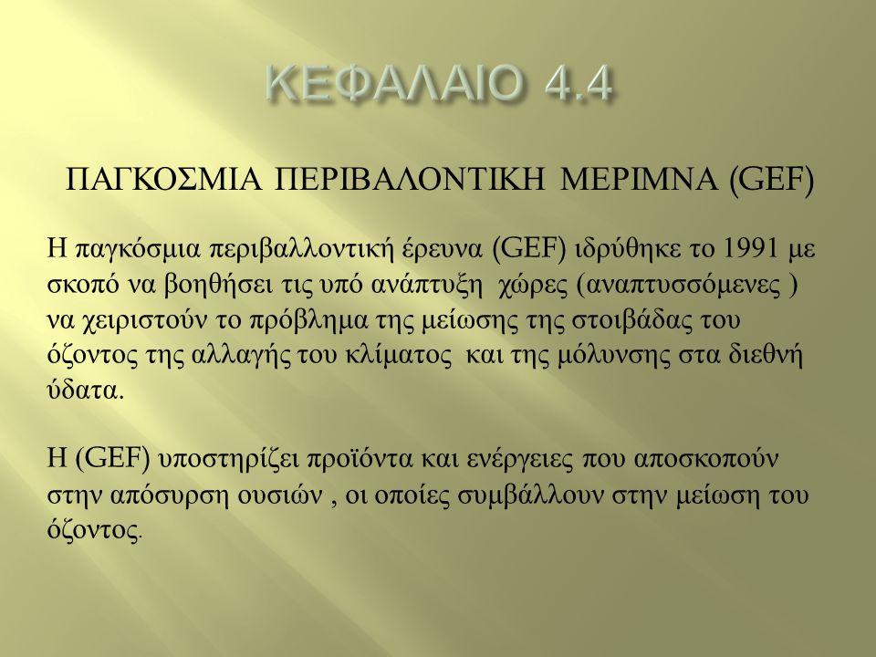 ΠΑΓΚΟΣΜΙΑ ΠΕΡΙΒΑΛΟΝΤΙΚΗ ΜΕΡΙΜΝΑ (GEF) Η παγκόσμια περιβαλλοντική έρευνα (GEF) ιδρύθηκε το 1991 με σκοπό να βοηθήσει τις υπό ανάπτυξη χώρες ( αναπτυσσό