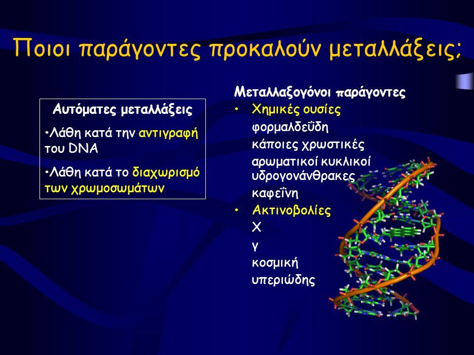 Ποιοι παράγοντες προκαλούν μεταλλάξεις; Μεταλλαξογόνοι παράγοντες •Χημικές ουσίες φορμαλδεΰδη κάποιες χρωστικές αρωματικοί κυκλικοί υδρογονάνθρακες καφεΐνη •Ακτινοβολίες Χ γ κοσμική υπεριώδης Αυτόματες μεταλλάξεις •Λάθη κατά την αντιγραφή του DNA •Λάθη κατά το διαχωρισμό των χρωμοσωμάτων