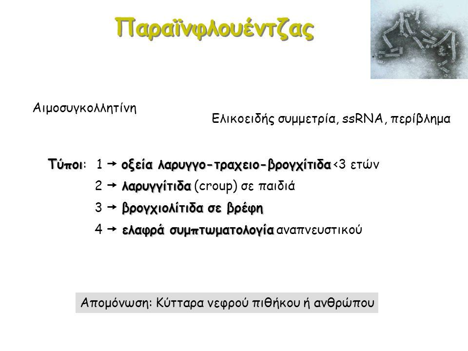 RSV Ελικοειδής συμμετρία, ssRNA, περίβλημα Βρογχιολίτιδα (βρέφη) Ανοσολογικός μηχανισμός + μικρό εύρος βρεφικών βρογχιολίων (απόφραξη από βύσματα ανοσοσυμπλεγμάτων/βλέννης  φλεγμονή) Γριπώδες σύνδρομο6% Γριπώδες σύνδρομο: 6% των περιστατικών σε παιδιά (διεθνώς) 10,5-12% 10,5-12% >> (Β' Εργ.
