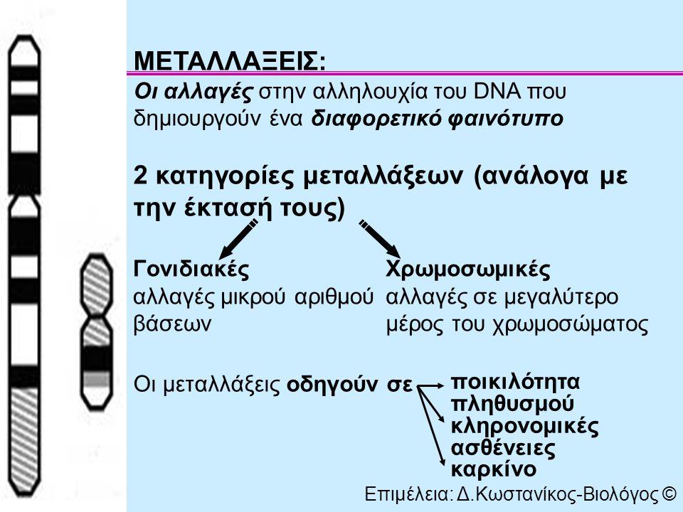 ΜΕΤΑΛΛΑΞΕΙΣ: Οι αλλαγές στην αλληλουχία του DNA που δημιουργούν ένα διαφορετικό φαινότυπο 2 κατηγορίες μεταλλάξεων (ανάλογα με την έκτασή τους) Οι μεταλλάξεις οδηγούν σε Γονιδιακές αλλαγές μικρού αριθμού βάσεων Χρωμοσωμικές αλλαγές σε μεγαλύτερο μέρος του χρωμοσώματος Επιμέλεια: Δ.Κωστανίκος-Βιολόγος © ποικιλότητα πληθυσμού κληρονομικές ασθένειες καρκίνο