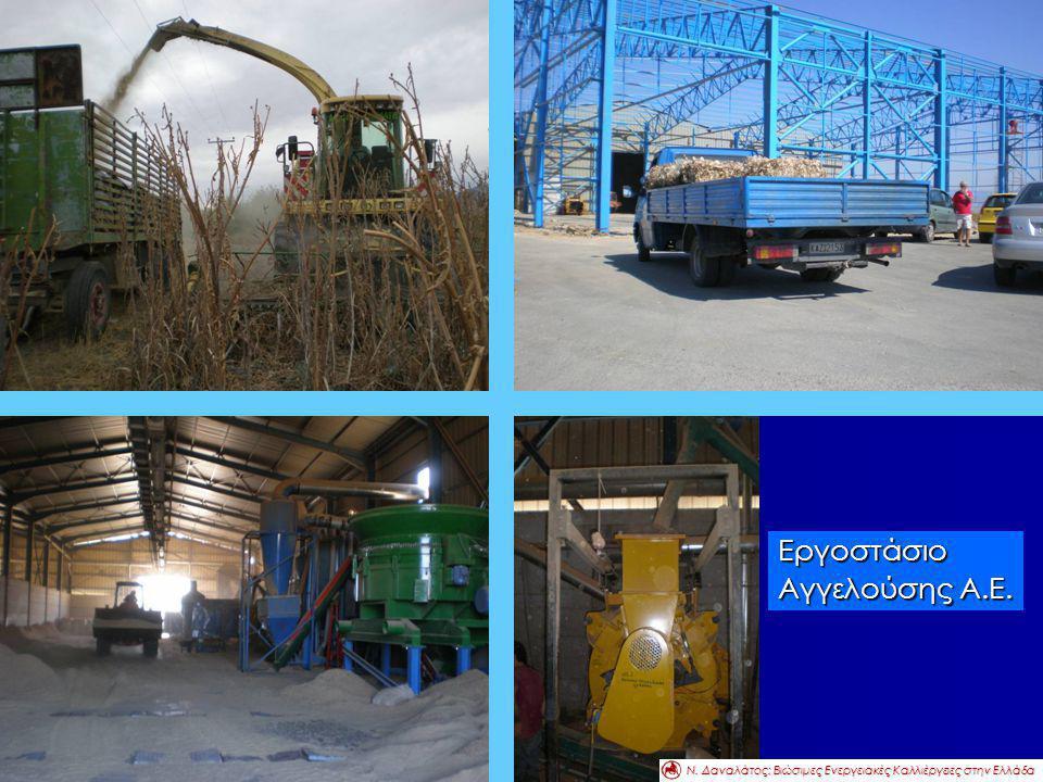 Εργοστάσιο Αγγελούσης Α.Ε. Ν. Δαναλάτος: Βιώσιμες Ενεργειακές Καλλιέργειες στην Ελλάδα