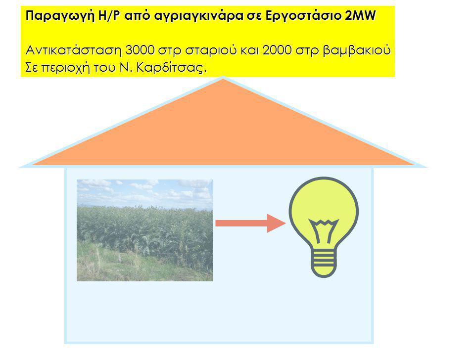 Παραγωγή Η/Ρ από αγριαγκινάρα σε Εργοστάσιο 2ΜW Αντικατάσταση 3000 στρ σταριού και 2000 στρ βαμβακιού Σε περιοχή του Ν. Καρδίτσας.