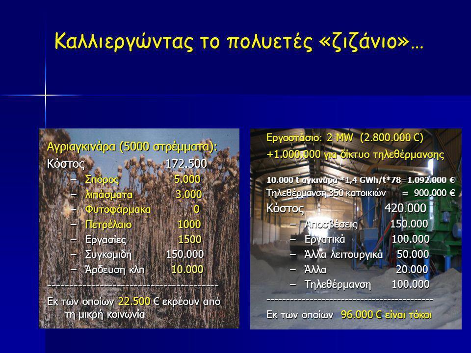 Αγριαγκινάρα (5000 στρέμματα): Κόστος 172.500 –Σ–Σ–Σ–Σπόρος 5.000 –λ–λ–λ–λιπάσματα 3.000 –Φ–Φ–Φ–Φυτοφάρμακα 0 –Π–Π–Π–Πετρέλαιο 1000 –Ε–Ε–Ε–Εργασίες 15