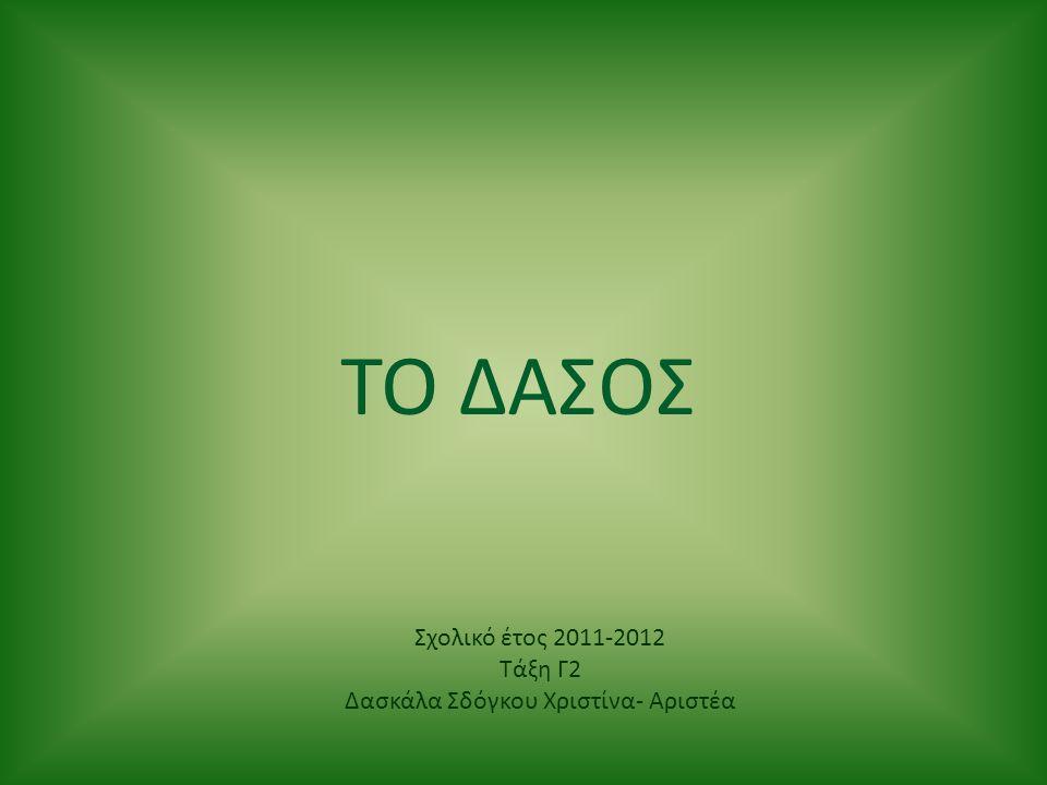 ΤΟ ΔΑΣΟΣ Σχολικό έτος 2011-2012 Τάξη Γ2 Δασκάλα Σδόγκου Χριστίνα- Αριστέα