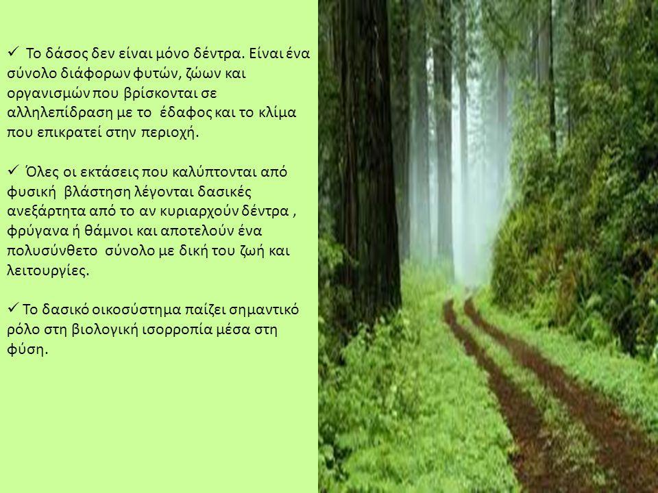  Το δάσος δεν είναι μόνο δέντρα. Είναι ένα σύνολο διάφορων φυτών, ζώων και οργανισμών που βρίσκονται σε αλληλεπίδραση με το έδαφος και το κλίμα που ε