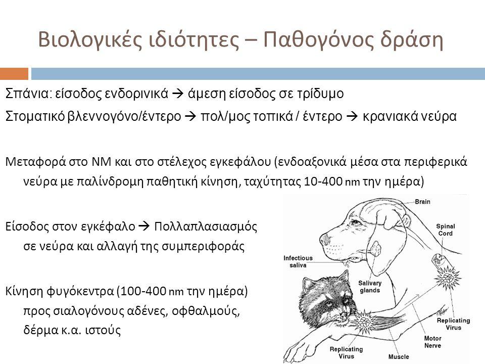 Βιολογικές ιδιότητες – Παθογόνος δράση Σπάνια: είσοδος ενδορινικά  άμεση είσοδος σε τρίδυμο Στοματικό βλεννογόνο/έντερο  πολ/μος τοπικά / έντερο  κ