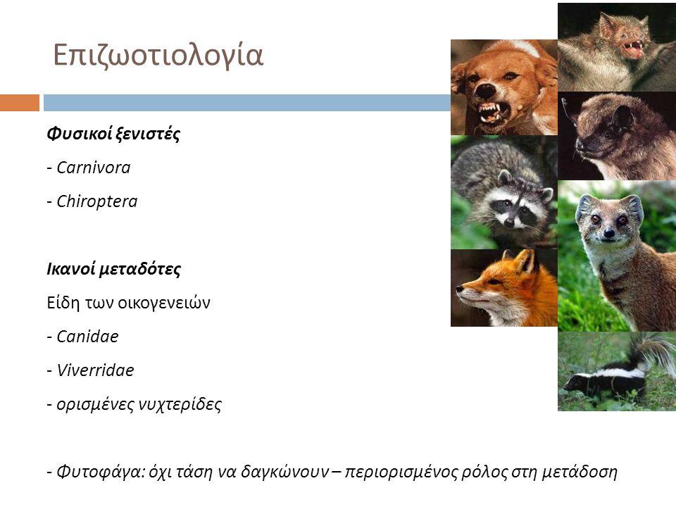 Επιζωοτιολογία Φυσικοί ξενιστές - Carnivora - Chiroptera Ικανοί μεταδότες Είδη των οικογενειών - Canidae - Viverridae - ορισμένες νυχτερίδες - Φυτοφάγ