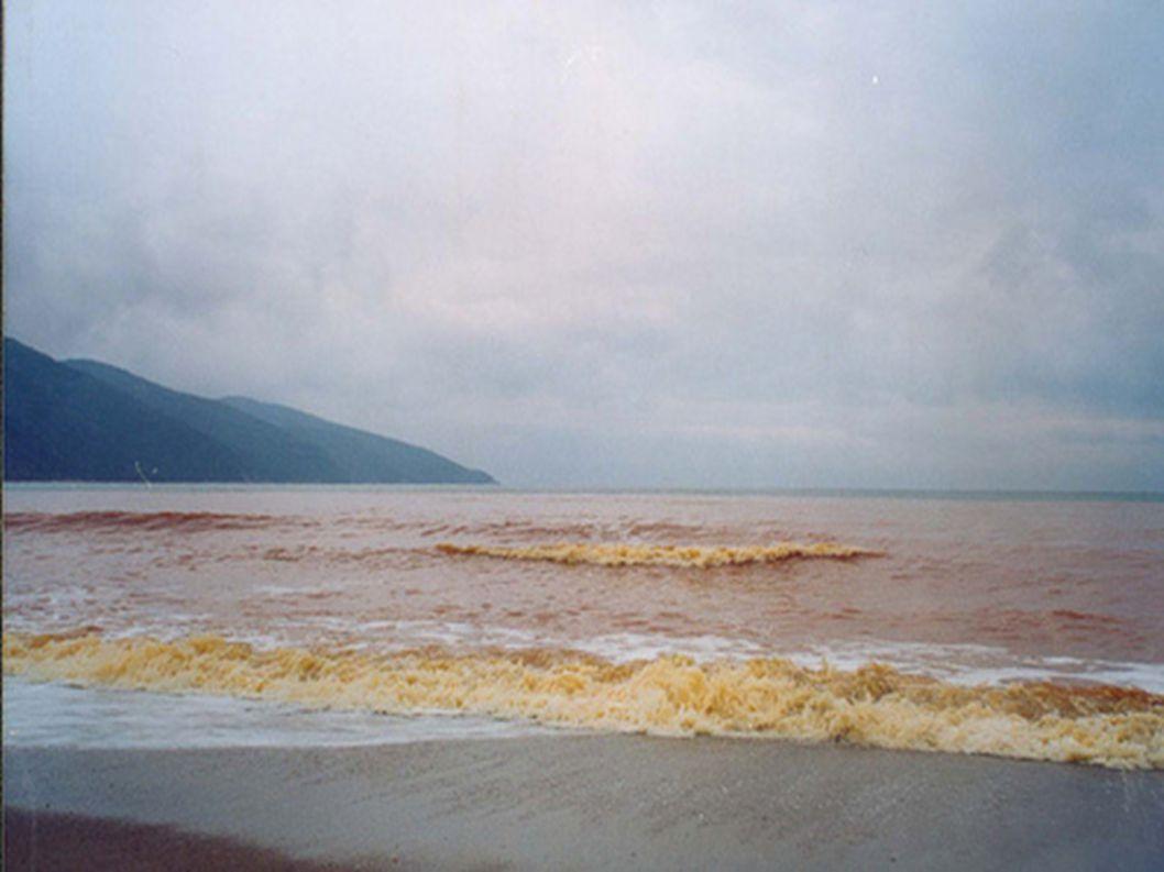 Αστοχία μονάδας επεξεργασίας νερών όξινης απορροής στοών, πλημμύρα Στρατωνίου, Φεβρουάριος 2010