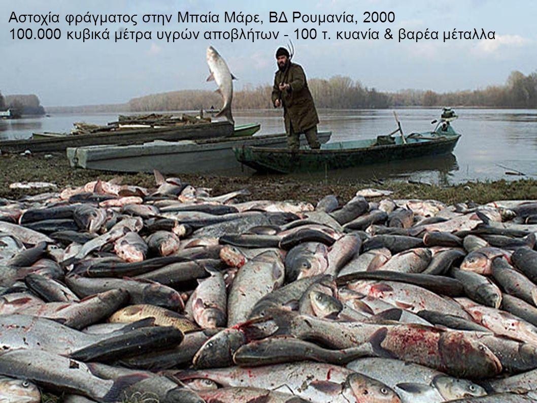 Αστοχία φράγματος στην Μπαία Μάρε, ΒΔ Ρουμανία, 2000 100.000 κυβικά μέτρα υγρών αποβλήτων - 100 τ.