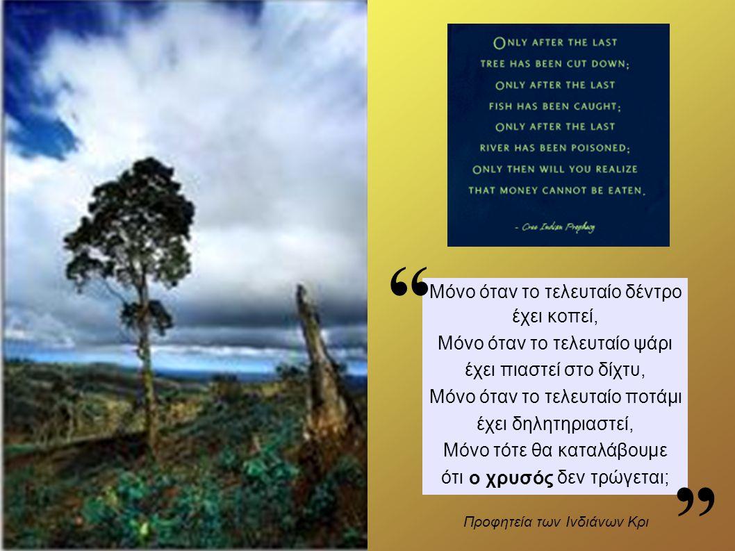 Μόνο όταν το τελευταίο δέντρο έχει κοπεί, Μόνο όταν το τελευταίο ψάρι έχει πιαστεί στο δίχτυ, Μόνο όταν το τελευταίο ποτάμι έχει δηλητηριαστεί, Μόνο τότε θα καταλάβουμε ότι το χρήμα δεν τρώγεται; Προφητεία των Ινδιάνων Κρι ο χρυσός