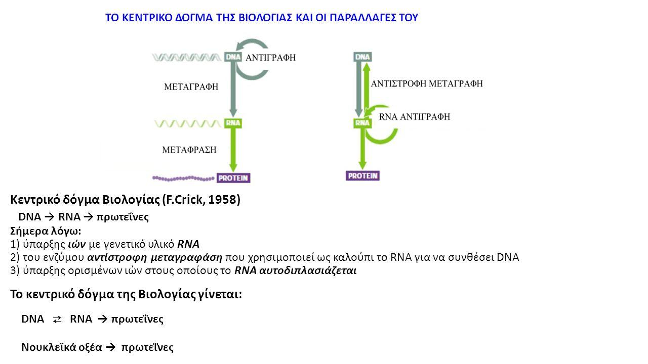 ΤΟ ΚΕΝΤΡΙΚΟ ΔΟΓΜΑ ΤΗΣ ΒΙΟΛΟΓΙΑΣ ΚΑΙ ΟΙ ΠΑΡΑΛΛΑΓΕΣ ΤΟΥ Κεντρικό δόγμα Βιολογίας (F.Crick, 1958) DNA → RNA → πρωτεΐνες Σήμερα λόγω: 1) ύπαρξης ιών με γε