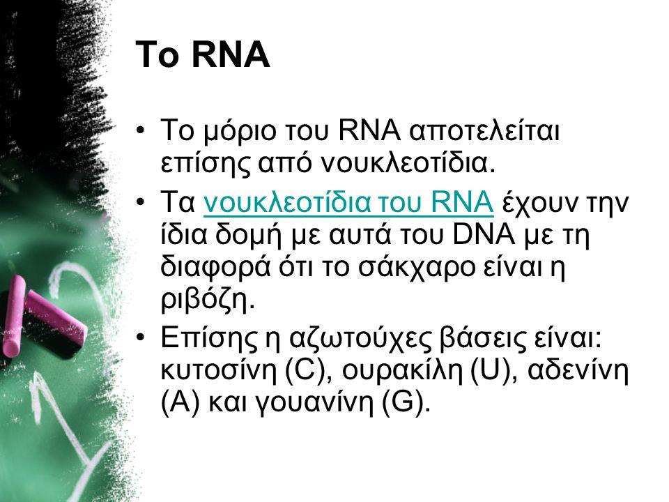 Το RNA •Το μόριο του RNA αποτελείται επίσης από νουκλεοτίδια. •Tα νουκλεοτίδια του RNA έχουν την ίδια δομή με αυτά του DNA με τη διαφορά ότι το σάκχαρ