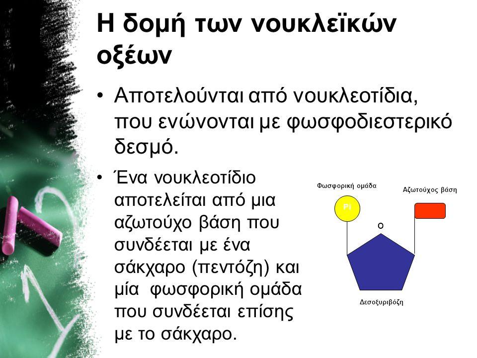Η δομή των νουκλεϊκών οξέων •Αποτελούνται από νουκλεοτίδια, που ενώνονται με φωσφοδιεστερικό δεσμό. O Pi Αζωτούχος βάση Δεσοξυριβόζη Φωσφορική ομάδα •