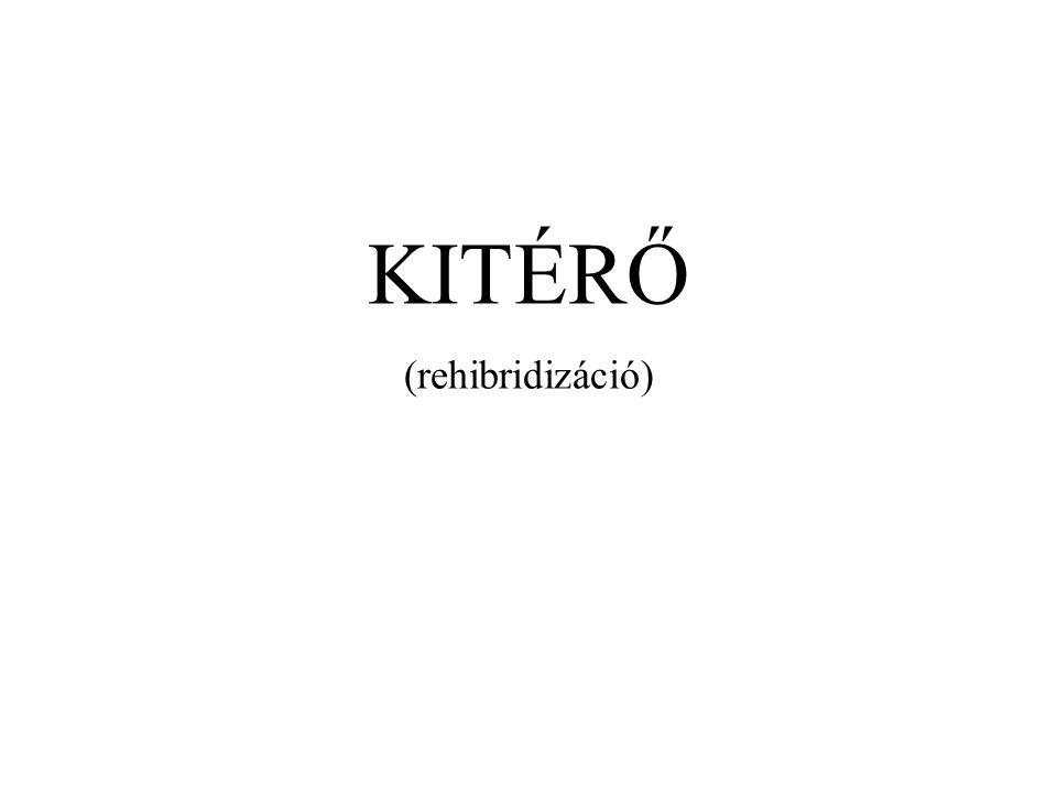 KITÉRŐ (rehibridizáció)