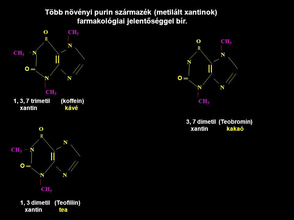 Több növényi purin származék (metilált xantinok) farmakológiai jelentőséggel bír. CH 3 N O CH 3 N N N = CH 3 = O ═ 1, 3, 7 trimetil (koffein) xantin k