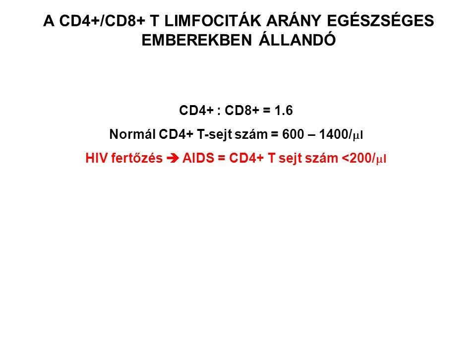 A CD4+/CD8+ T LIMFOCITÁK ARÁNY EGÉSZSÉGES EMBEREKBEN ÁLLANDÓ CD4+ : CD8+ = 1.6 Normál CD4+ T-sejt szám = 600 – 1400/  l HIV fertőzés  AIDS = CD4+ T sejt szám <200/  l