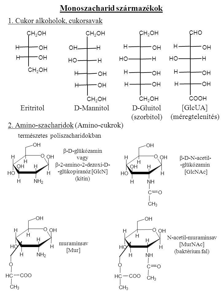 O OH H H HOHO H OH HNH 2 H OH O OH H H HOHO H OH HNH H OH C CH 3 O O OH H HNHN H OH HOH COO H O C CH 3 CHOH-CHOH-CH 2 OH  -D-galaktózamin [GalN]  -D-N-acetilgalaktózamin [GalNAc] N-acetilneuraminsav (sziálsav) [Sia, NeuNAc] 3.