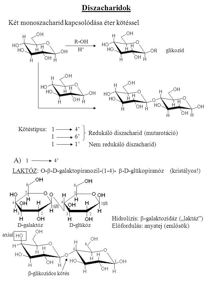 CELLOBIÓZ: O-  -D-glükopiranozil-(1-4)-  -D-glükopiranóz (kristályos!) 1  4 4 6 6 D-glükóz MALTÓZ: O-  -D-glükopiranozil-(1-4)-  -D-glükopiranóz (kristályos!) (keményítő, enzimes lebontás) 11 11 1  4 6 4 6 D-glükóz  -glikozidos kötés  -glikozidos kötés Hidrolizís:  -glikozidáz (állatok nagyrésze, ember)  -glikozidáz (baktériumok) B) 16' GENTOBIÓZ: O-  -D-glükopiranozil-(1-6)-  -D-glükopiranóz (kristályos!) 1  6 4 O-  -D-glükopiranozil- -(1-6)-  -D-glüko- piranóz 1  1  6 4 O O OH H H H H H OH OH OH O H OH H H H H OHOH OH OH