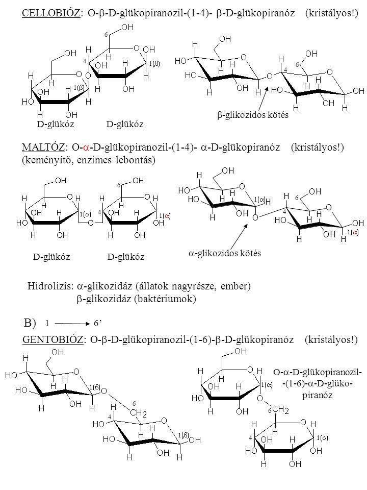 """C)C) 11' SZACHARÓZ (nádcukor, répacukor): O-  -D-glükopiranozil-(1-2)-  -D-fruktofuranozid H+H2OH+H2O D-glükóz + D-fruktóz méz D-glükózD-fruktóz  0 = +66,5 o (jobbra forgat) """"invertálás (invertáz)  0 = +52,75 o  0 = -92,4 (jobbra forgat) (balra) -39,7 o  -glikozidos kötés (glükóz)  -glikozidos kötés (fruktóz) 1  2  5 6 4 6 1"""