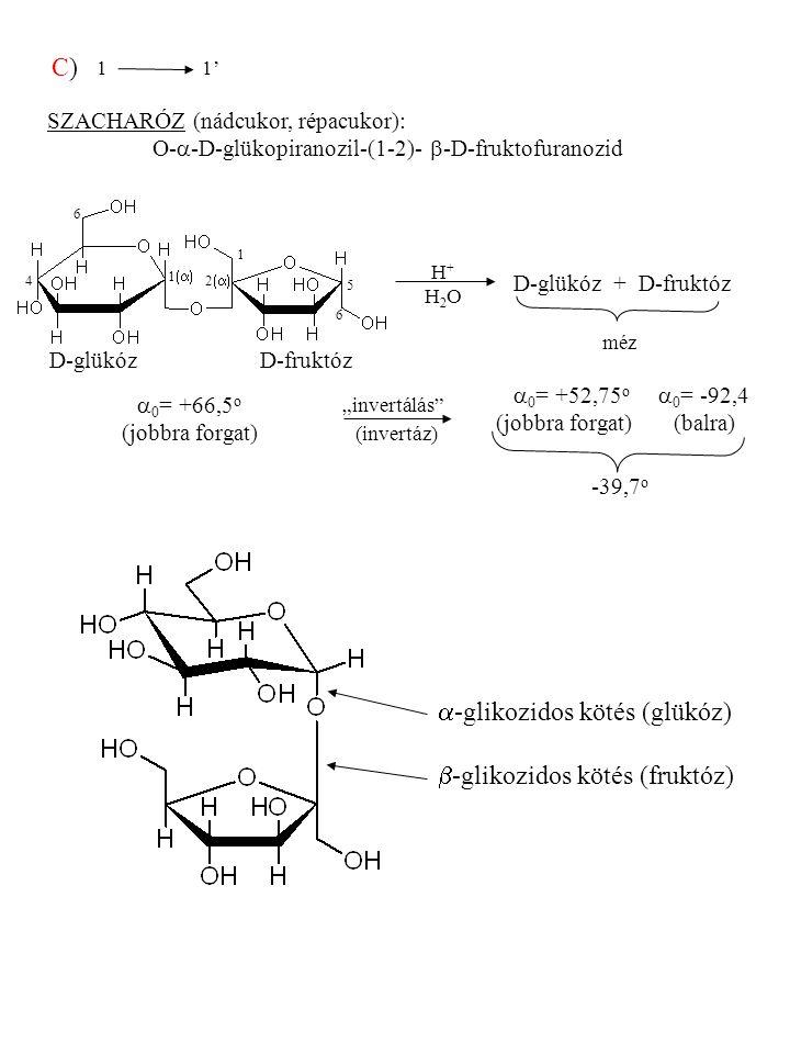 Heteroglikánok HIALURONSAV KONDROITIN-SZULFÁT   D-Glükuronsav N-acetil-D-glükózamin D-Glükuronsav N-acetil-D-galaktózamin- -6-szulfát (1 3)  és (1 4)  200 000- 2 000 000 (1 3)  kötés: hialuronidáz EC.3.2.1.36 (orvosi pióca) (1 4)  kötés: hialuronidáz EC.3.2.1.35 (ondósejt, baci) (1 3)  és (1 4)  Chondros, görög = porc, rög láncok: 10 000 Å HEPARIN D-Glükuronsav- -2-szulfát N-szulfo-D-galaktózamin- -6-szulfát     (1 4)  (1916) véralvadásgátló DERMATÁN-SZULFÁT L-Lauronsav N-acetil-D-galaktózamin- -4-szulfát (1 3)  és (1 4) 