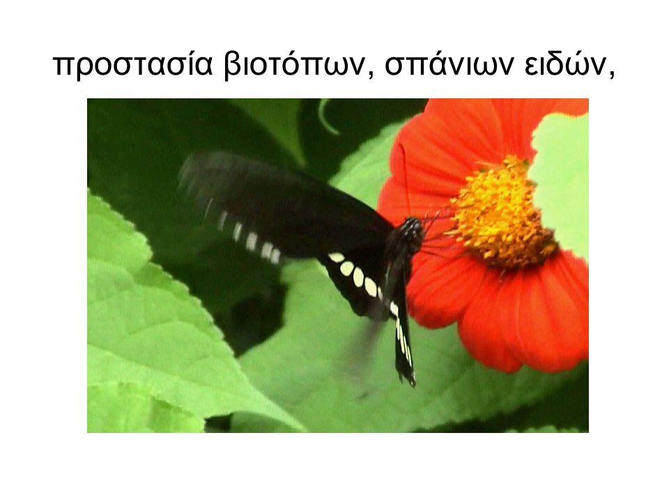 προστασία βιοτόπων, σπάνιων ειδών,
