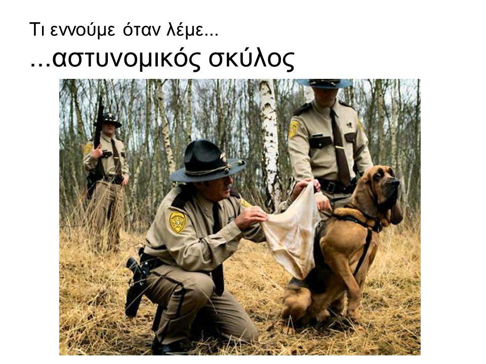 Τι εννούμε όταν λέμε......αστυνομικός σκύλος