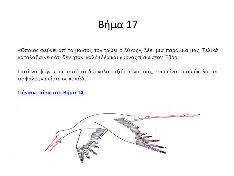 Βήμα 17 «Όποιος φεύγει απ' το μαντρί, τον τρώει ο λύκος», λέει μια παροιμία μας. Τελικά καταλαβαίνεις ότι δεν ήταν καλή ιδέα και γυρνάς πίσω στον Έβρο