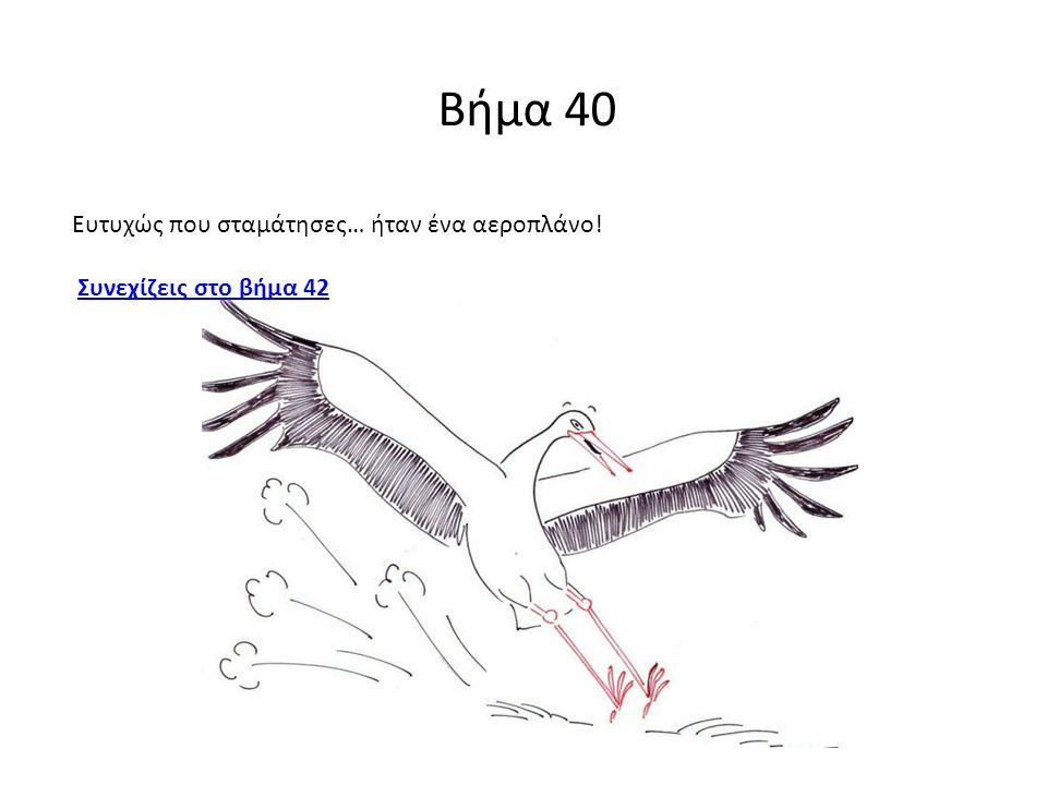 Βήμα 40 Ευτυχώς που σταμάτησες… ήταν ένα αεροπλάνο! Συνεχίζεις στο βήμα 42