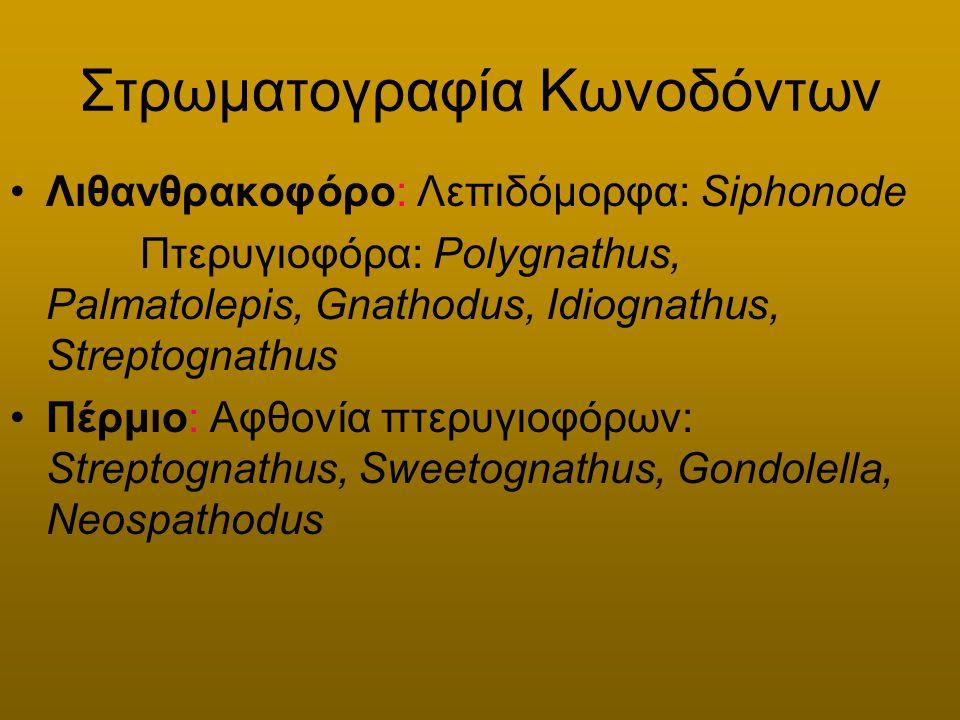 Στρωματογραφία Κωνοδόντων Λιθανθρακοφόρο: Λεπιδόμορφα: Siphonode Πτερυγιοφόρα: Polygnathus, Palmatolepis, Gnathodus, Idiognathus, Streptognathus Πέρμι